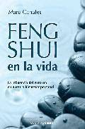 Feng shui en la vida: la influencia del entorno en nuestro bienes tar personal